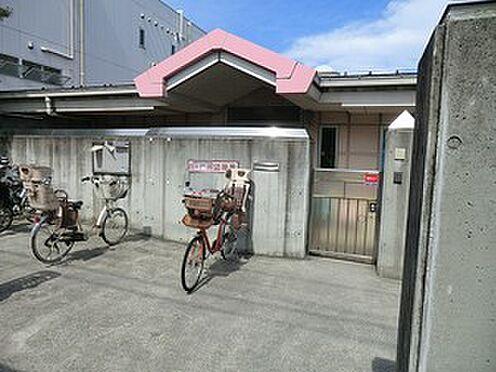 アパート-杉並区清水3丁目 周辺環境:桃井幼稚園