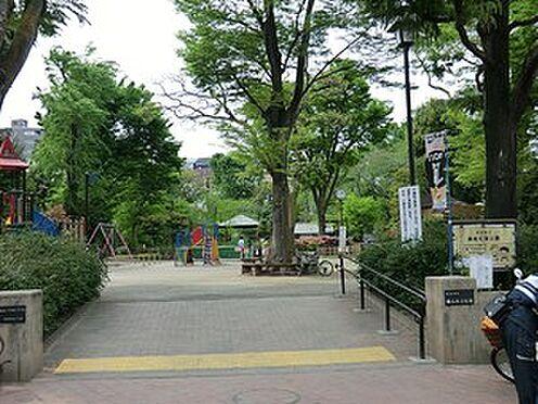 マンション(建物一部)-渋谷区南平台町 鍋島松濤公園