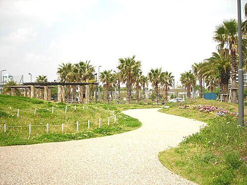 中古マンション-浦安市日の出2丁目 小高い丘が広がる『明海の丘公園』。お子様やペットが思い切り走る事のできる広々とした公園です。
