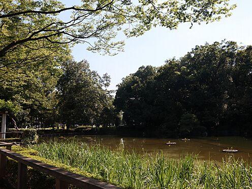 区分マンション-戸田市大字上戸田 後谷公園まで徒歩9分(670m)
