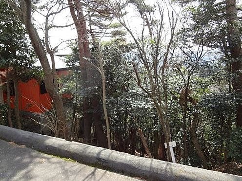 土地-熱海市上多賀 南下り斜面地となっております。日当りの良さをご覧いただけます。