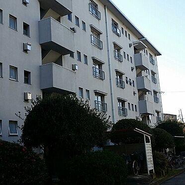 マンション(建物一部)-堺市北区東浅香山町3丁 外観