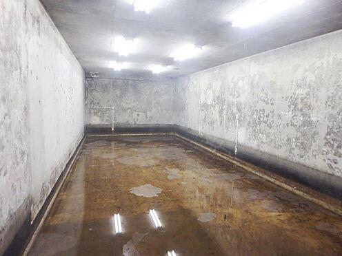 アパート-京都市伏見区深草大亀谷西寺町 地下室