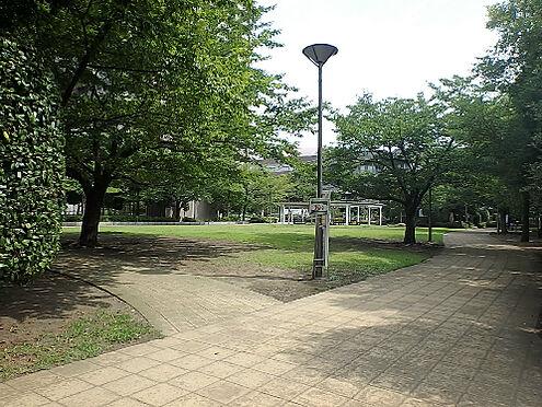中古マンション-中央区晴海2丁目 区立晴海第二公園(550m)