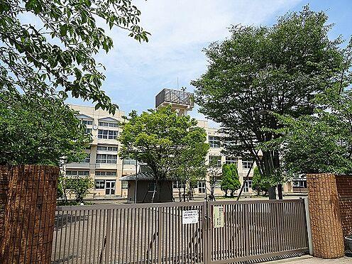 中古マンション-八王子市別所1丁目 八王子市立松木中学校(750m)