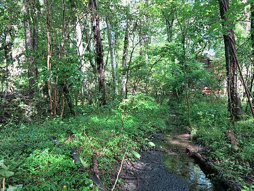 土地-北佐久郡軽井沢町大字長倉 緑が多く残っております。