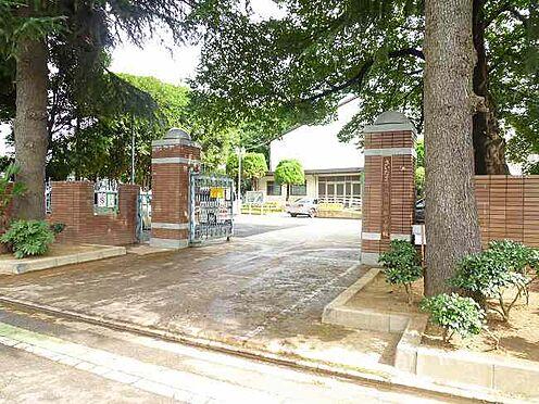 マンション(建物全部)-さいたま市南区根岸3丁目 南浦和小学校 徒歩8分(600m)