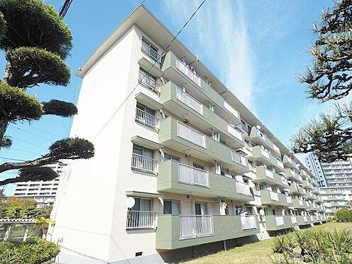 中古マンション-千葉市美浜区幸町2丁目 南向きの日当りの良い棟です!