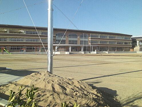 土地-東松山市大字高坂 【小学校】高坂小学校まで約120m