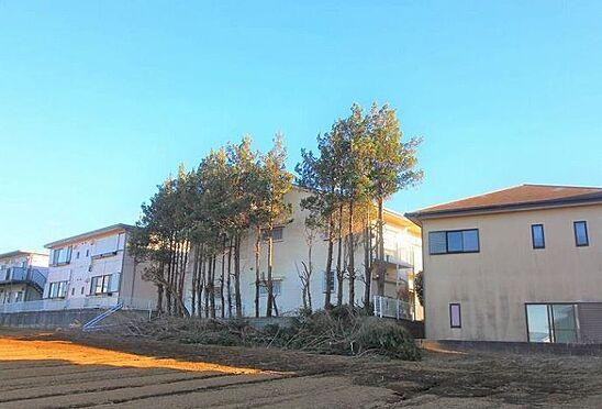 アパート-八街市榎戸 エリートレジデンス・収益不動産