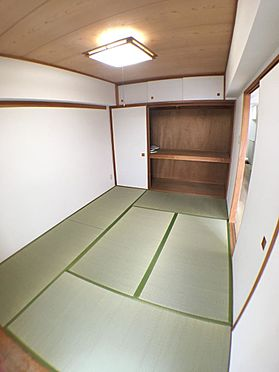 マンション(建物一部)-東松山市材木町 内装