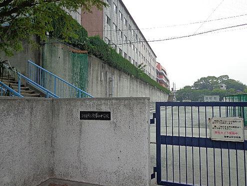 新築一戸建て-名古屋市天白区天白町大字八事字裏山 御幸山中学校 1360m 徒歩約17分