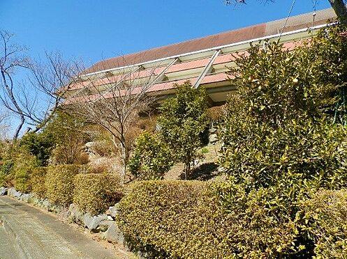 中古一戸建て-田方郡函南町平井南箱根ダイヤランド 芝庭以外にも南箱根ダイヤランドのメイン道路の沿道を賑わす植栽スペースもございます。