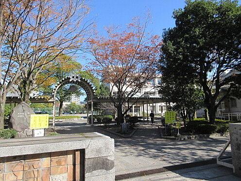 マンション(建物一部)-鹿児島市下竜尾町 長田中学校 徒歩 約9分(約690m)