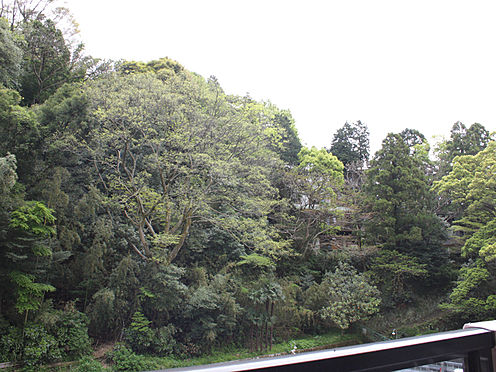 リゾートマンション-足柄下郡湯河原町宮上 バルコニーからの眺望