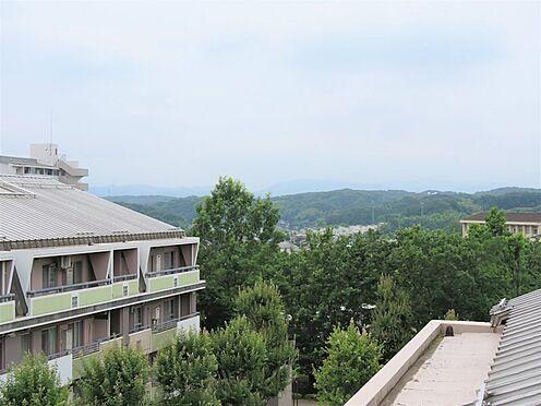 中古マンション-八王子市上柚木3丁目 遠くの緑がルーフバルコニーから見えます。
