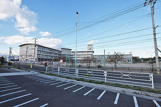 新築一戸建て-仙台市若林区荒井3丁目 七郷小学校 約50m