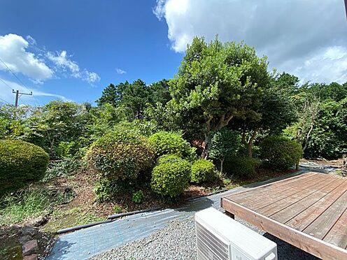 中古一戸建て-伊東市富戸大室高原 小さなスペースですが南側にお庭がございます。