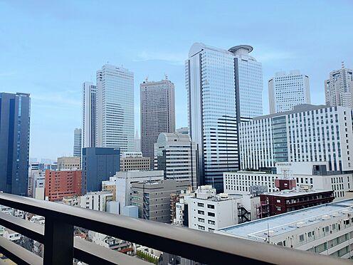 区分マンション-新宿区西新宿8丁目 南側バルコニーからの眺望