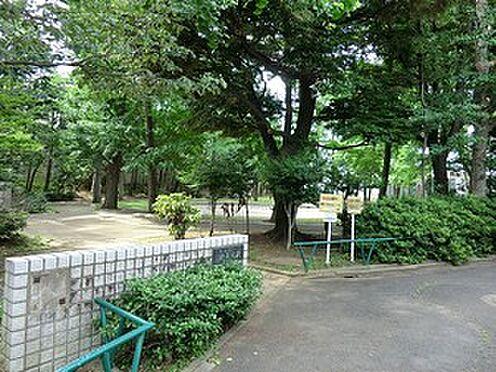 アパート-杉並区堀ノ内3丁目 済美公園