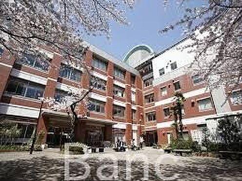 中古マンション-葛飾区東新小岩3丁目 私立東京聖栄大学 徒歩6分。 460m