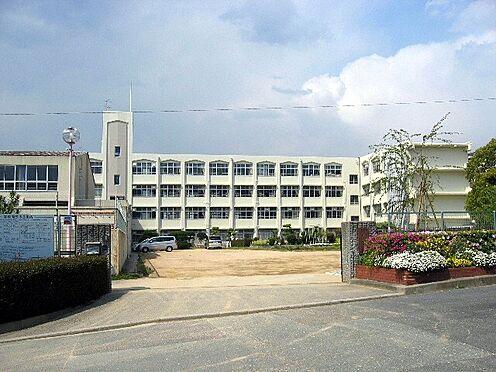 新築一戸建て-神戸市垂水区つつじが丘2丁目 神戸市立つつじが丘小学校