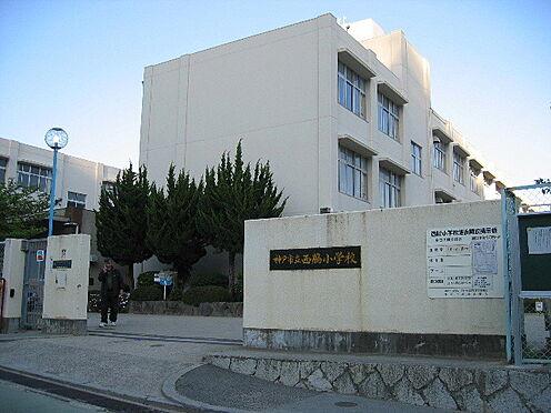 新築一戸建て-神戸市垂水区神陵台5丁目 神戸市立西脇小学校