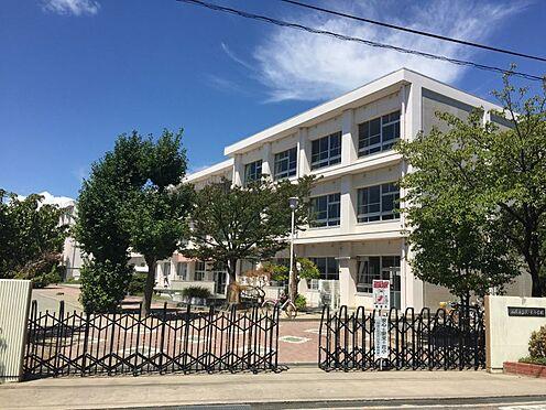 新築一戸建て-西尾市今川町一本松 花ノ木小学校 約1300m(徒歩約17分)