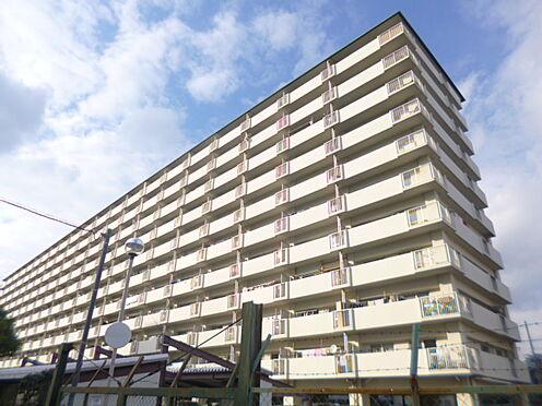 マンション(建物一部)-大阪市平野区加美南2丁目 重厚感のある外観です