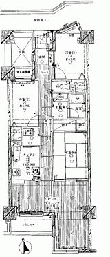 マンション(建物一部)-本庄市東台1丁目 間取り