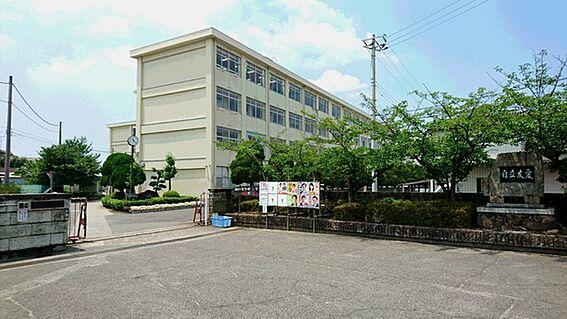 建物全部その他-加古川市平岡町新在家 加古川市立平岡中学校まで674m
