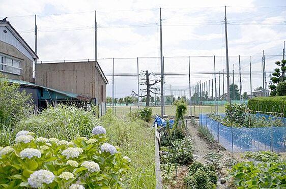 土地-富山市本郷町 北側敷地内から見た隣地との境の様子