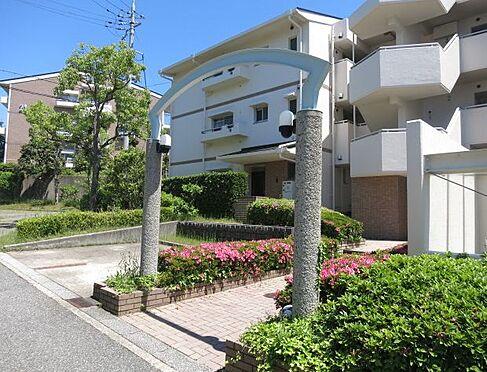 マンション(建物一部)-神戸市垂水区小束山1丁目 植栽の植わる暖かみのあるエントランス