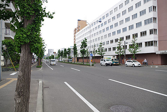 マンション(建物一部)-札幌市西区二十四軒二条5丁目 前面道路
