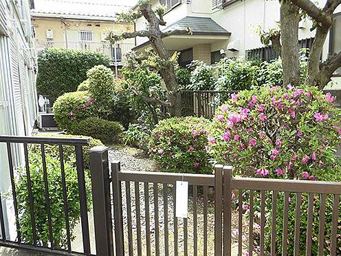 アパート-中野区若宮1丁目 南側にお庭があります。