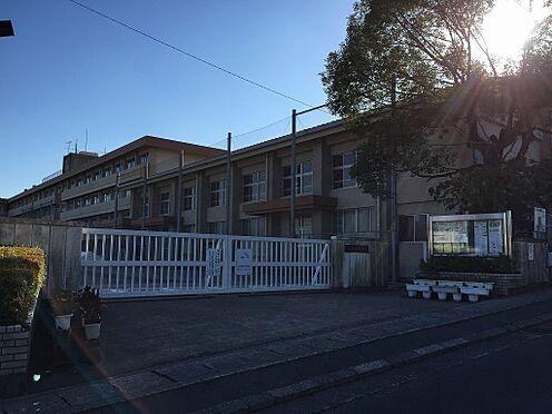 建物全部その他-鹿児島市西別府町 西陵中学校 徒歩 約45分(約3600m)
