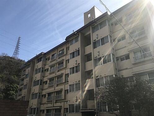 区分マンション-神戸市灘区鶴甲2丁目 外観