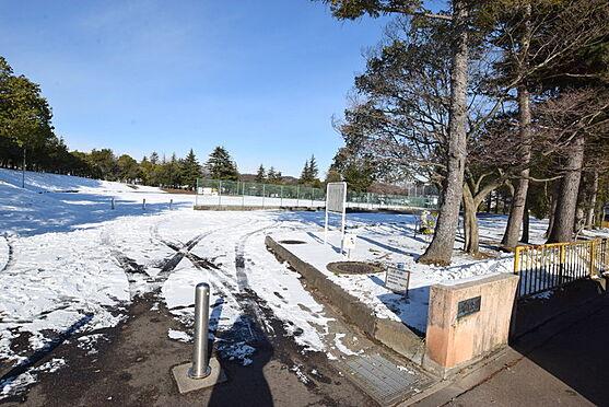 新築一戸建て-仙台市太白区太白1丁目 太白公園 約50m