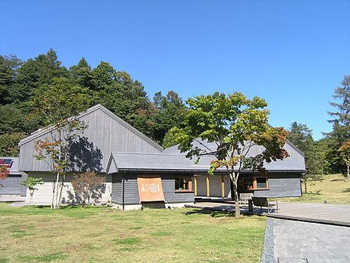 土地-北佐久郡軽井沢町大字長倉 星野温泉「トンボの湯」まで約2.5km。