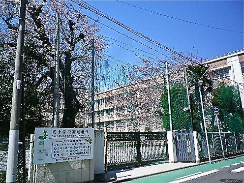 中古マンション-名古屋市中区大井町 橘小学校 約730m(徒歩10分)