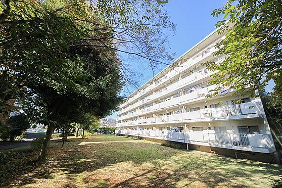 マンション(建物一部)-相模原市緑区下九沢 外観5