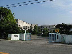 北大井 土地 29358