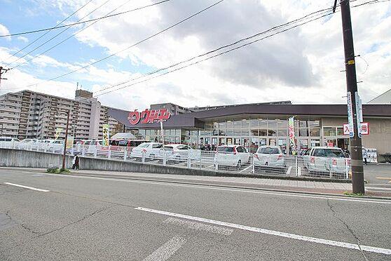 新築一戸建て-仙台市青葉区中山7丁目 ウジエスーパー中山店 約600m