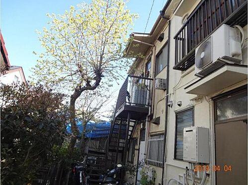 アパート-大田区東雪谷5丁目 外観