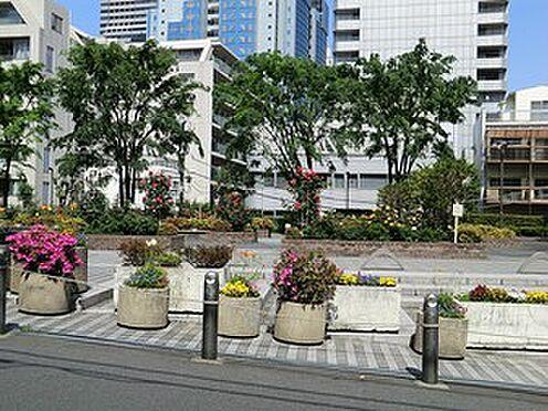 中古マンション-港区赤坂8丁目 周辺環境:氷川公園