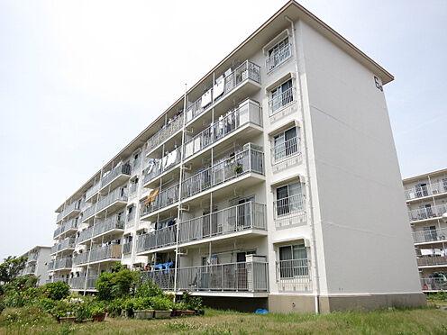 マンション(建物一部)-神戸市垂水区青山台4丁目 キレイなデザインの建物です。
