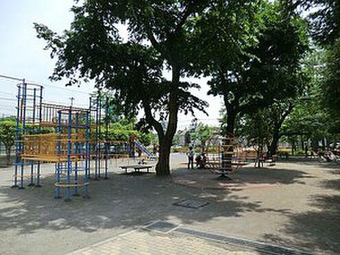 マンション(建物全部)-世田谷区上馬4丁目 周辺環境:小泉公園