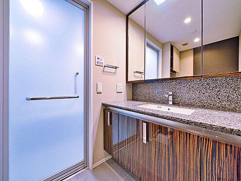 区分マンション-新宿区南元町 洗面所(写真の家具・什器は価格には含まれません)