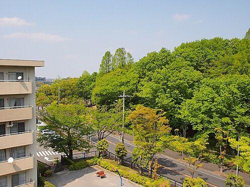 中古マンション-横浜市緑区霧が丘6丁目 北側眺望