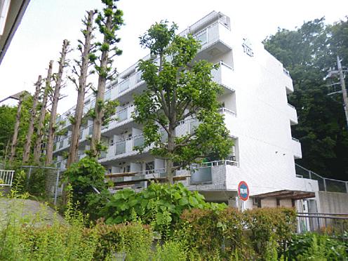 マンション(建物一部)-板橋区成増5丁目 外観